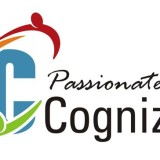 cognizant (Custom)